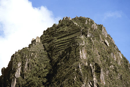 Terraced Mountain with temple at Manchu Picchu
